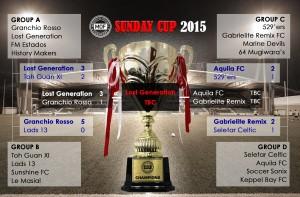 sun cup 2015-2