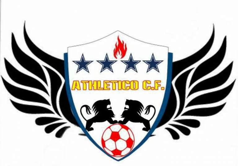 Team LOGO ACF